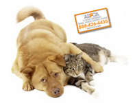 Free ASPCA Pet Safety Kit