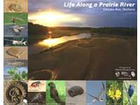 Free Prairie River Poster