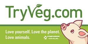 Free Try Veg Bumper Sticker