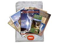 Free Yellowstone Trip Planner