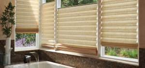Free Certified Hunter Douglas In-Home Consultation from Home Depot