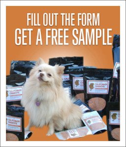 Expired: Free Powder 4 Paws Sample
