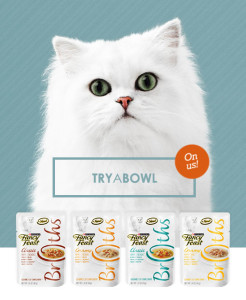Expired:Free Fancy Feast Broths