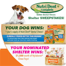 Expired: *ENDS TONIGHT* Win the Nylabone Sweepstakes!