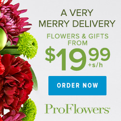 Expired: Free Vase from ProFlowers