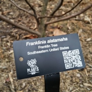 Expired: Free Customized Plant Tag Sample